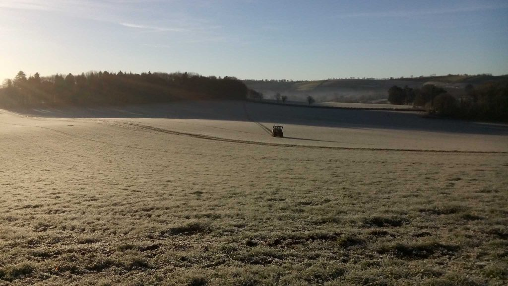 Marking out lines on our agroforestry field in the frost