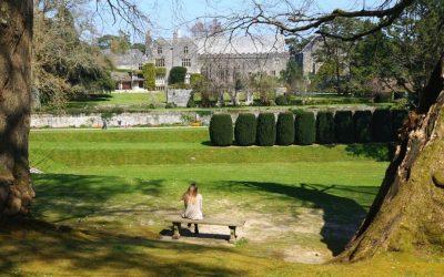 Practising place-fullness with Dr Sarah Elisa Kelly