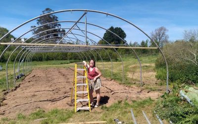 Zero-miles food takes on a whole new dimension at Dartington a with brand new polytunnel
