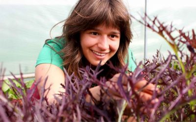 Could our new undergraduate degree help shape farming's future?
